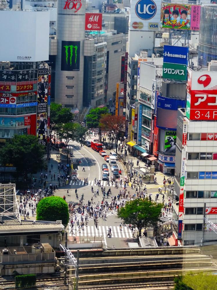 Shibuya, wie es leibt und lebt!